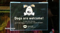 dog-r-welcome