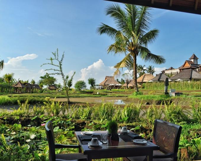 View Desa Visesa Ubud Bali