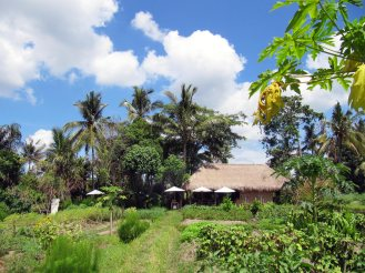 visesa_village_experience_activities_review_bali_18