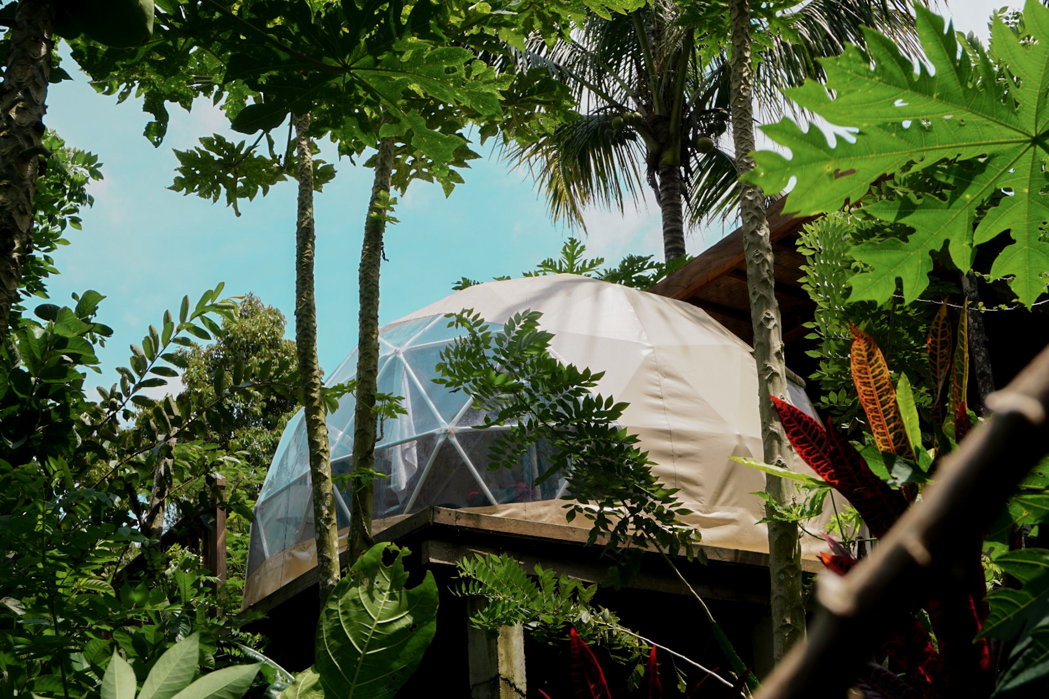Family Holiday in the Forest at Bali Jungle Camping